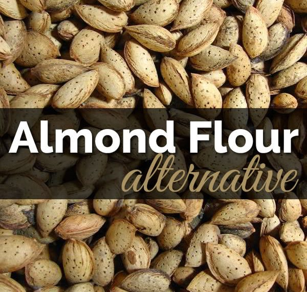 Almond Flour replacement