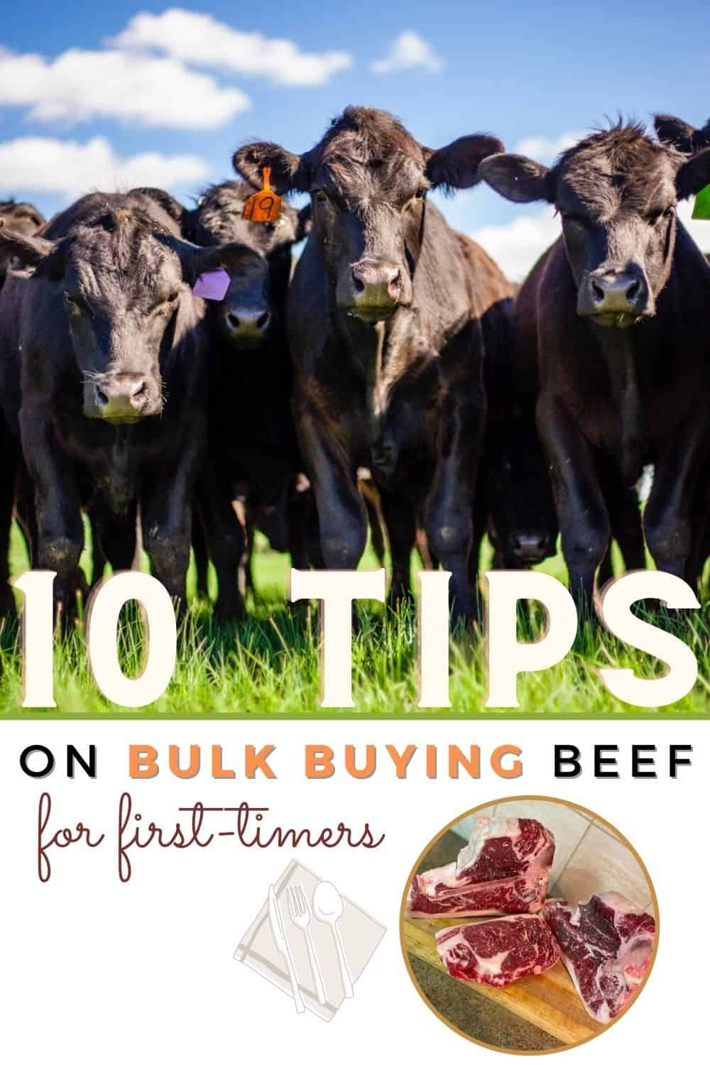 10 Tips on Bulk Buying Beef for First Timers