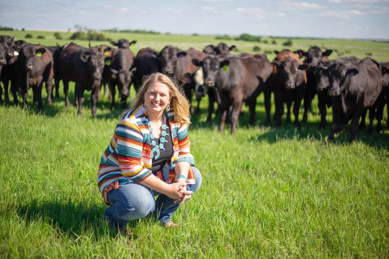 10 Tips on Bulk Buying Beef for First Timers 4